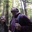 People in outdoor activity Redwoods forest hiking — Stock Video #42000495