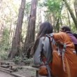 Hiking couple in forest Redwoods, San Francisco — Stock Video