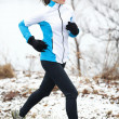 Woman jogging in a snowy landscape — Stock Photo #44255081