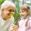 Stock Photo: Girl giving her great grandmother flowers