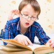 Boy reads the book — Foto Stock