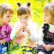 Children playing on meadow — Stock Photo #29205861