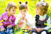 Children playing on meadow — Stock Photo