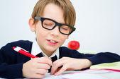 Schoolboy writing homework — Stockfoto