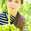 Girl holding grapes — Stock Photo #34330313