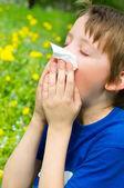 Säsongen allergi — Stock fotografie
