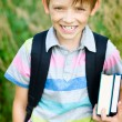 Cute schoolboy — Stock Photo
