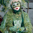 Royalty-Free Stock Photo: Masked person at the Venice Carnival 2013
