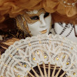 Masked person at the Venice Carnival 2014 — Stock Photo #41641835