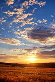 Sunset over mountain meadow — Stock Photo