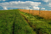 путешествие вокруг деревянный забор — Стоковое фото