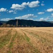 Stubble fields early spring with forested mountains in background - Stock Photo