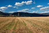 Stubble fields early spring with forested mountains in background — Stock Photo