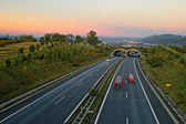 Asphalt highway with ecoduct at sunset — Stock Photo