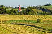 Torre da igreja de aldeia entre as árvores de folha caducas — Foto Stock