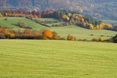 Meadows and trees with leaves in autumn colors — Stockfoto