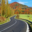 Stock Photo: Empty road towards wooded mountain flamboyant of colours autumn