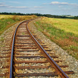 Rusty railroad tracks on a railway embankment between meadows — Stock Photo