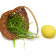 Yellow easter egg with a basket and grass — Stock Photo