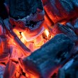 Stock Photo: Burning campfire embers (hot coal)