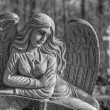 Cemetry angel statue — Stock Photo