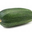 Marrow — Stock Photo
