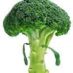 Broccoli — Stock Photo #20723999