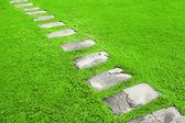 садовая дорожка — Стоковое фото