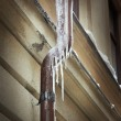 Foto Stock: Icicles