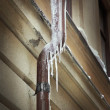 Stockfoto: Icicles