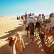 Stock Photo: Tourists on camel