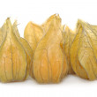 Physalis — Stock Photo #21012299
