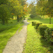 Path in the park — Stock Photo #21013227