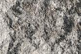 Textura de pedra — Fotografia Stock