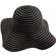 Summer hat — Stock Photo #21204521