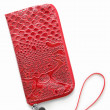 Cell phone case — Stock Photo #21205013
