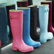 Wellingtons — Stock Photo