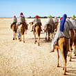 Tourists on camel - Photo
