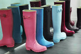 Wellingtons — Foto Stock