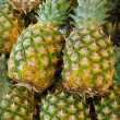 Pineapples — Stock Photo #23570405