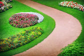 Flowerbeds — Stock Photo
