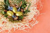 čokoládová vajíčka v hnízdě — Stock fotografie