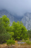 Low cloud in the mountains — Stock Photo
