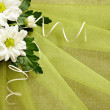 Flowers and green organza — Stock Photo