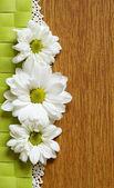 Margaritas y encaje sobre fondo de madera — Foto de Stock
