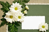 Chamomile decoration and a card — Stock Photo