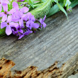 Wildflowers on a wooden board — Foto Stock