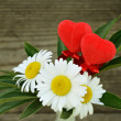 Bouquet with daisies and two red hearts — Stock Photo
