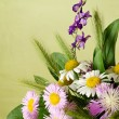 Bouquet of summer flowers — Stock Photo