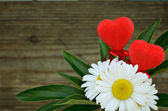 Daisies and two hearts — Stock Photo